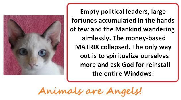 angela-template-asking-god-for-reinstall