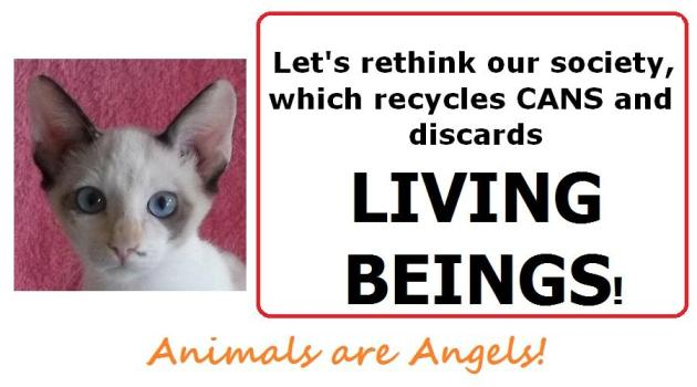 angela-template-lets-rethink-our-society