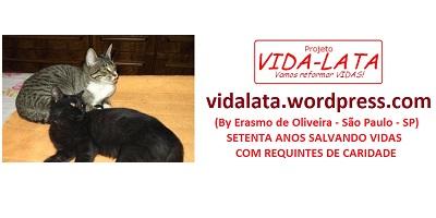 Logo Projeto Vidalata 400 x 200